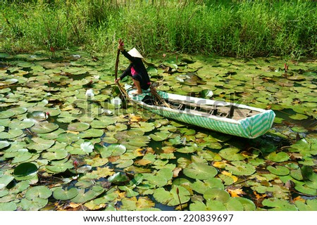 DONG THAP, VIET NAM- SEPT 23: Asian farmer sitting on row boat, pick water lily, one food from nature, aquatic plant at Mekong Delta, water-lily as vegetable in Vietnamese dish, Vietnam, Sept 23, 2014 - stock photo