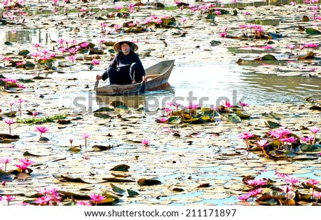 DONG THAP, Vietnam, May 26, 2014 a woman (name unknown) was boating on the pond lilies, delta province of Dong Thap, Viet Nam - stock photo
