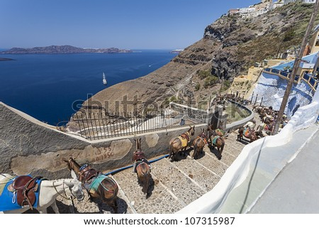 donkey at the port of Fira in Santorini, Greece - stock photo