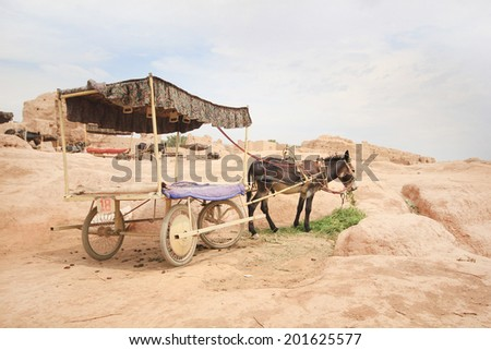 Donkey, Carriages in the Old city Gaochang on the Silk road - stock photo