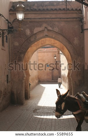 Doorway in Morroco city Marakesh with donkey - stock photo