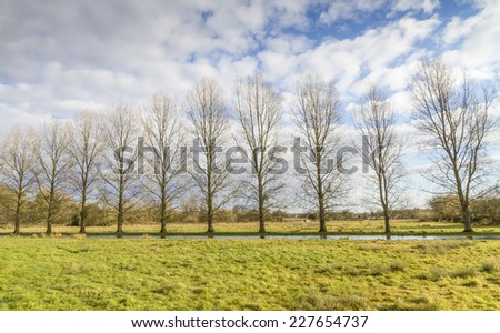 Dorset countryside. Stream meandering through a field lined by trees on the far bank - stock photo