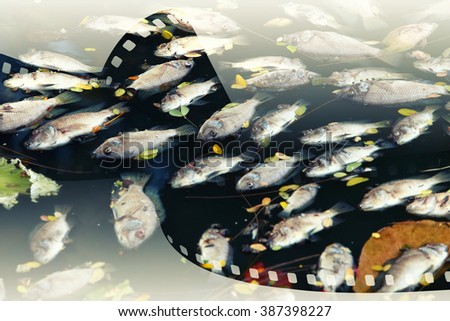Double exposure of dead fish floated in the dark.  - stock photo