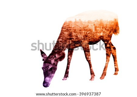Double Exposure of Deer with Cityscape and Building as Natural or Wildlife conservancy Concept - stock photo