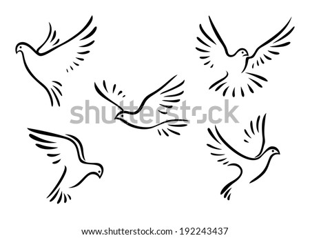 Doves and pigeons set for peace concept and wedding  logo design. Vector version also available in gallery - stock photo
