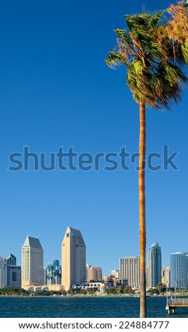 Downtown San Diego Vertical Format Abstract - stock photo