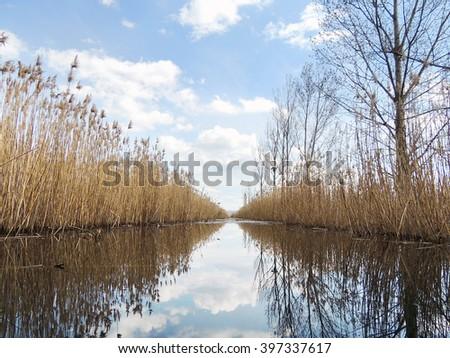 Dragoman Swamp - Natural Reserve and birds habitat, Bulgaria - stock photo