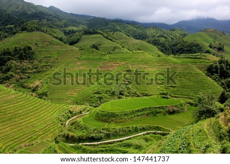Dragon's Backbone Rice Terraces in Dazhai Village, Longsheng County, China - stock photo