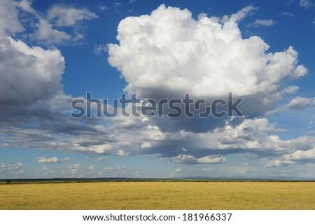 Dramatic cloud and the vast grassland of savanna - stock photo