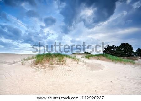 dramatic cloudscape over sand dunes, Appelscha - stock photo