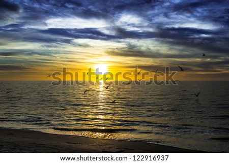 dramatic dark cloudy sunset over the ocean with flying seagulls - stock photo