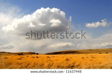 Dramatic sky over a field of grass in Arizona - stock photo
