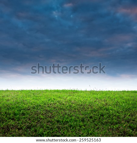 Dramatic sky with beautiful grass for background. - stock photo
