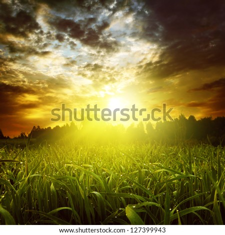 Dramatic sunset over green grass field. - stock photo