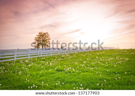 Dramatic sunset sky at country site. Summer landscape. - stock photo