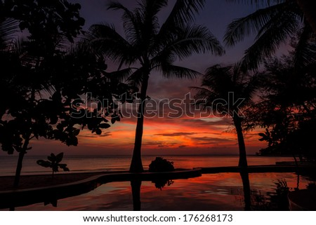 Dramatic Sunset with silhuettes palm and reflection in swimming pool - stock photo