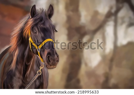 Drawing of a horse, portrait, red horse, - stock photo