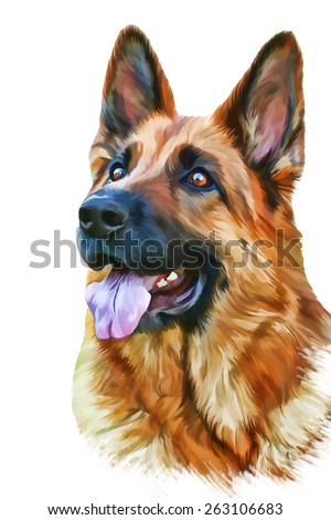 Drawing of the dog German Shepherd Dog, water color paints - stock photo