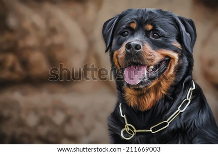 Drawing of the dog rottweiler, tricolor - stock photo
