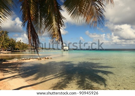 Dream Beach on Manihi Atoll in the South Pacific with Shadow of Coconut Tree in Turquoise Water. - stock photo