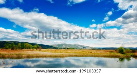Dreamy swamp landscape with overcast skies above - stock photo