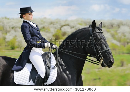 Dressage - stock photo