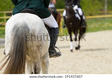 Dressage horse and a rider - stock photo