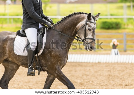 Dressage rider at competition test. - stock photo