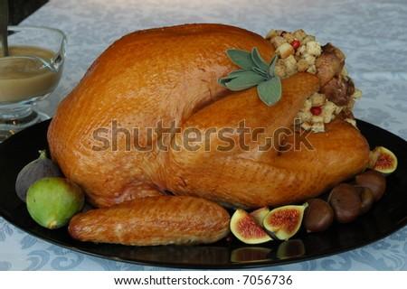 dressed and stuffed turkey - stock photo