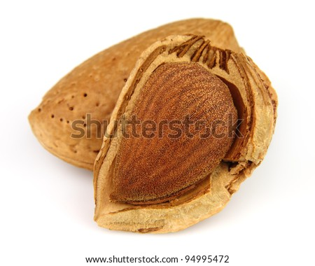 Dried almond - stock photo