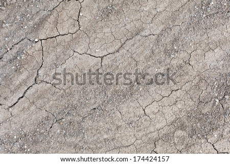 Dried and cracked surface - stock photo