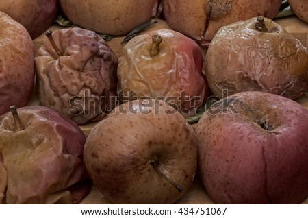Dried apples, dead apples. - stock photo