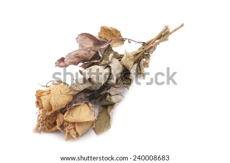 Dried Bouquet of Roses on white background - stock photo