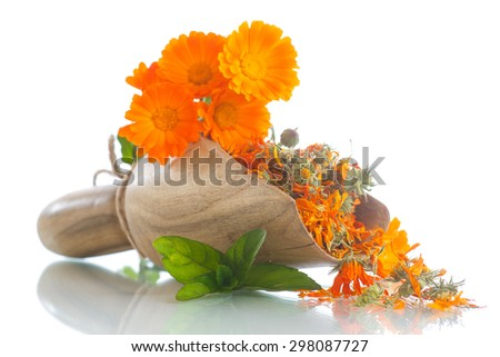 dried calendula flowers on a white background - stock photo