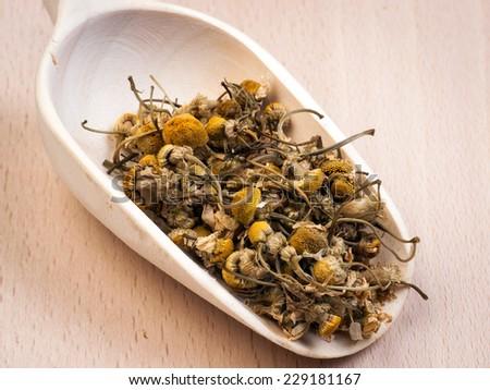 Dried chamomile - stock photo