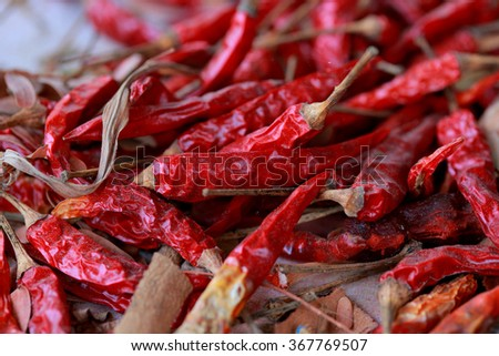 Dried chili a spicy condiment - stock photo
