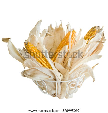 Dried corn white background - stock photo
