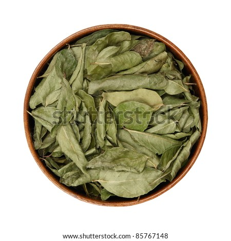 Dried curry leaves in a bowl, white background - stock photo