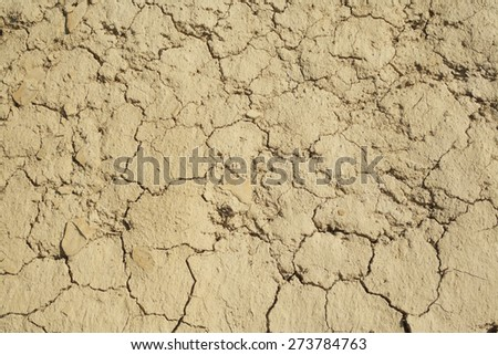 Dried earth background - stock photo