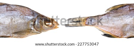 dried fish isolated on white background - stock photo