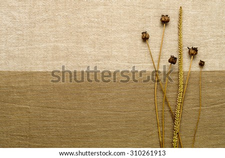 dried flowers on a background of beige fabric - stock photo