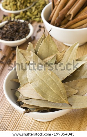 Dried Indian Bay Leaves and Spices - stock photo