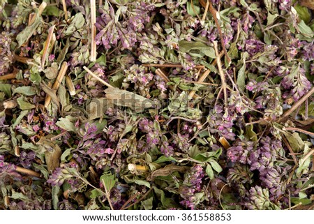 Dried marjoram spice as food background - stock photo
