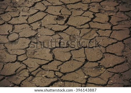 Dried mud near the river dry year destruction of nature and ecology - stock photo