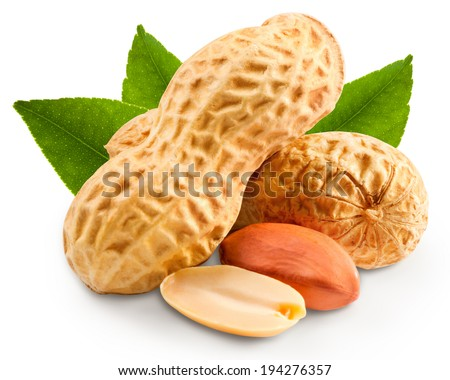 Dried peanuts in closeup  - stock photo