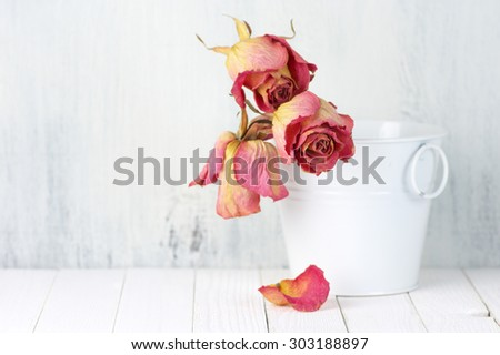 Dried pink roses in white bucket on rustic wooden background. Shallow DOF, focus on front rose. - stock photo