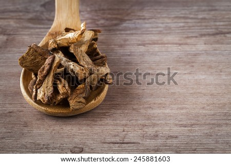 Dried porcini mushrooms on a wooden spoon - stock photo