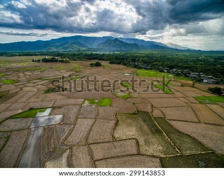 Dried rice field top view from drone northern Lampang, Thailand  - stock photo