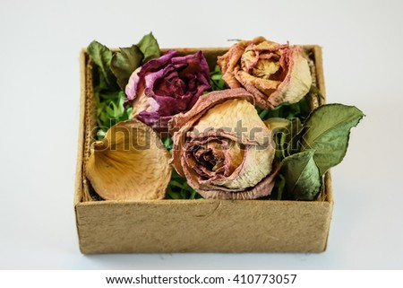 Dried roses in brown box with white background - stock photo