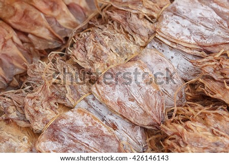 Dried Squid,squids drying in the sun in a market. - stock photo
